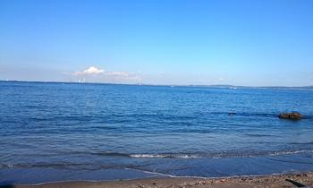 1228 海岸.jpg