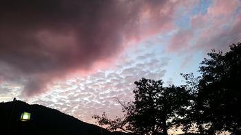 1282 嵐山.jpg