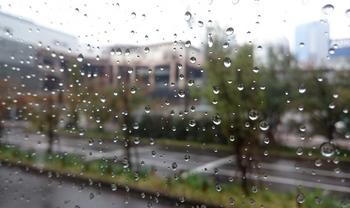 1660 雨.jpg